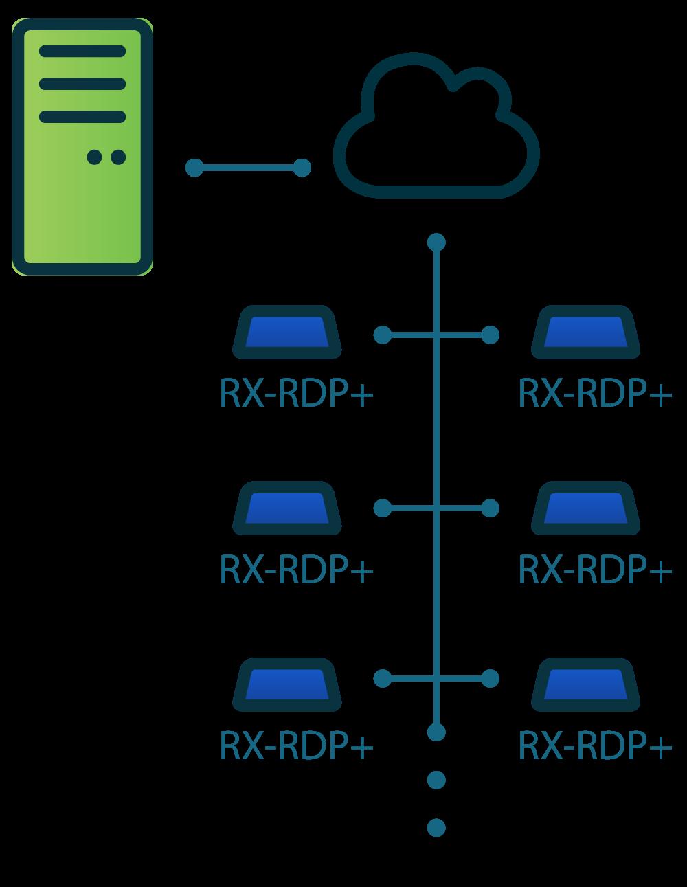 RX-RDP+ architecture